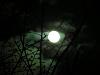 月齢 13.5(小望月)