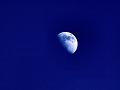 月(色加工):半月