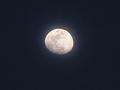 月(色加工):十三夜(白)