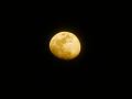 月(色加工):十三夜(黄)