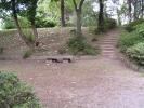 上田城址公園 花木園のベンチ