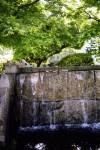 大手門公園 雀の水浴び
