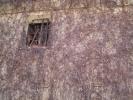 蔦の絡んだ土蔵の壁