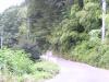 山道(下り坂)