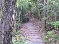 小道(登り)
