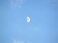 18時の半月