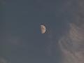 夕暮れの半月