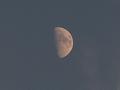 夕暮れの半月(アップ)