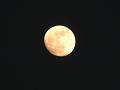 14夜の黄色い月