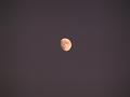 月齢 10.1(ロング)