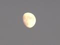 月齢 10.1(アップ)