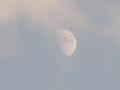 午後の半月(ロング)