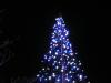 青と白のツリー